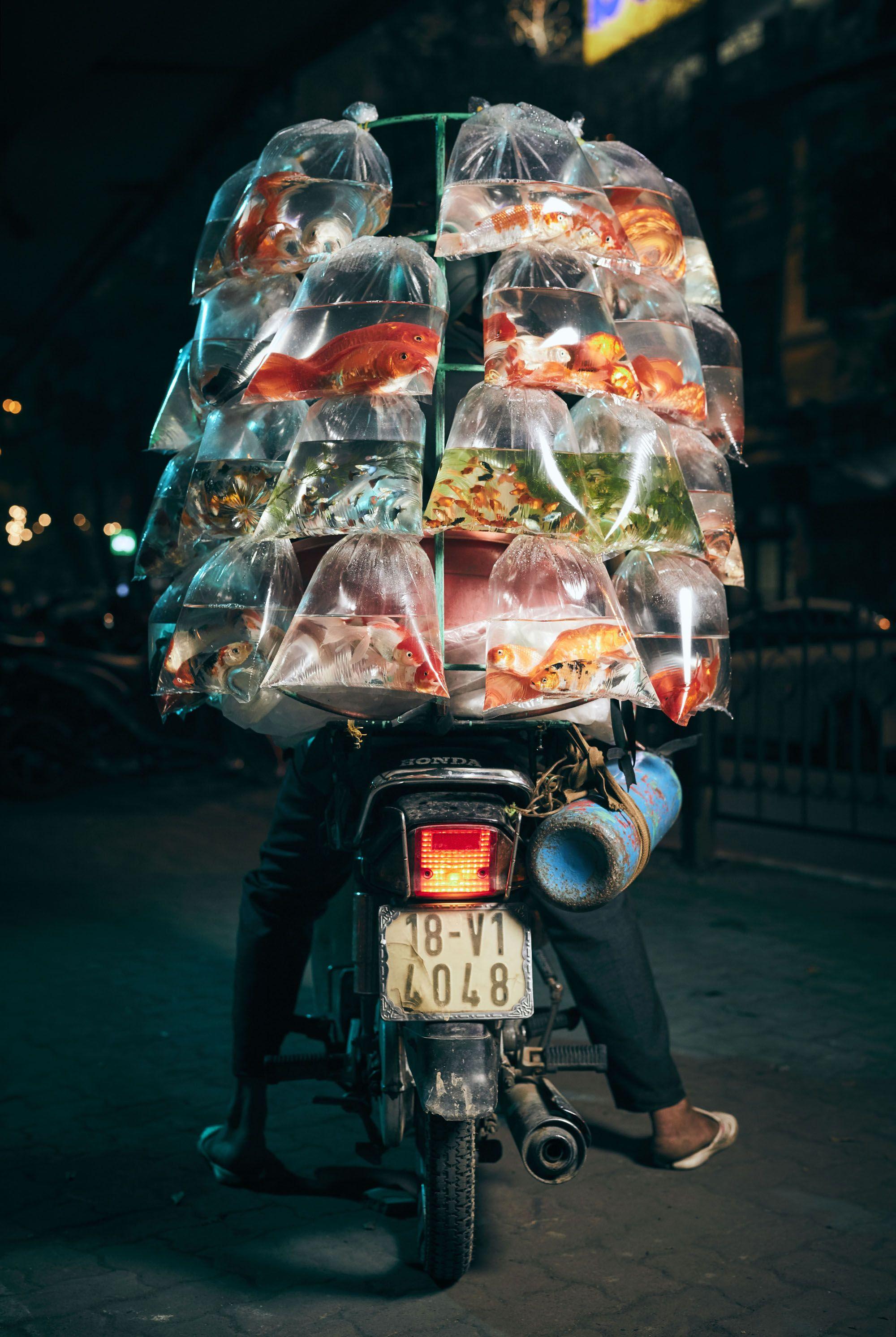 ماهی فروش