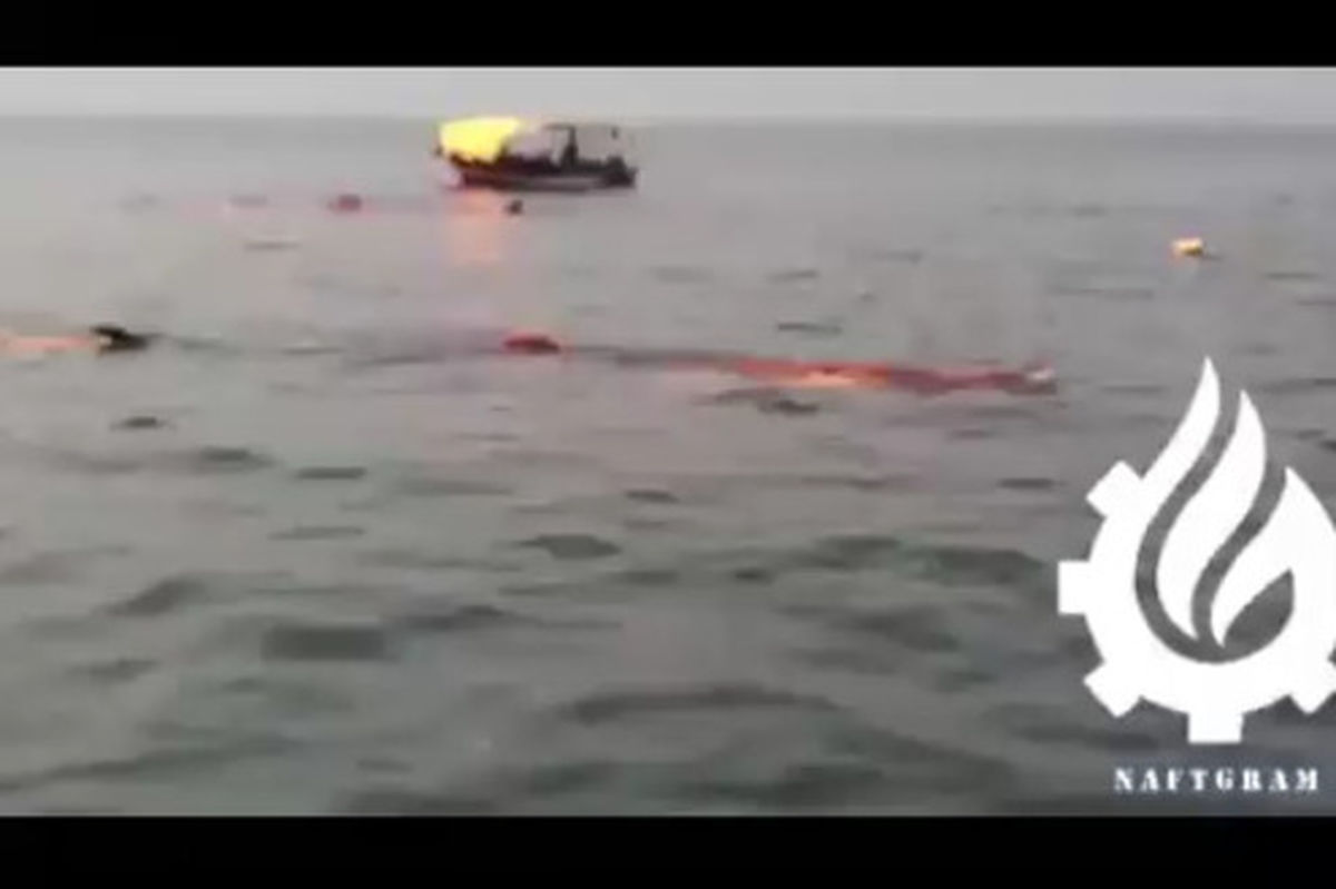 فیلم: کوسه نهنگ غولپیکر ۱۹ متری مهمان ناخوانده سکوی نفتی فروزان