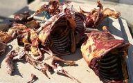 گوشت الاغ در گوشتهای چرخ شده تهران!