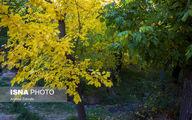 تصاویر: پاییز روستای کاسوا