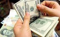 تصمیمات ارزی دولت بدون بانک مرکزی اتخاذ میشود