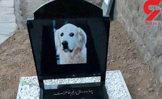 مراسم لاکچری برای خاکسپاری یک سگ در رشت! +عکس