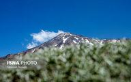 واکنش سازمان محیط زیست به واگذاری کوه دماوند
