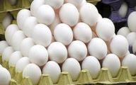 قیمت  هر کیلو تخم مرغ چقدر شد؟