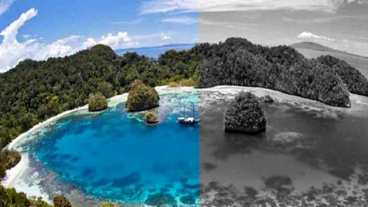 جزیره عجیب که ساکنانش رنگ ها را نمی بینند! +تصاویر