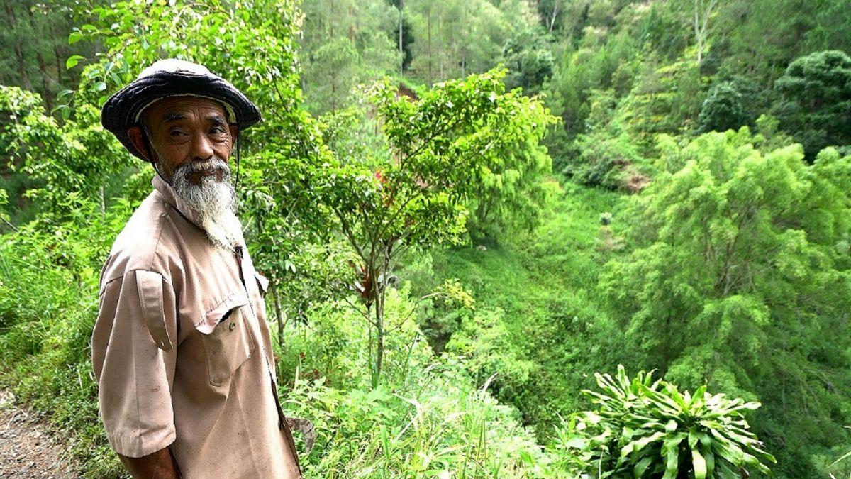 شاهکار یک کشاورز برای ساخت یک جنگل! +فیلم