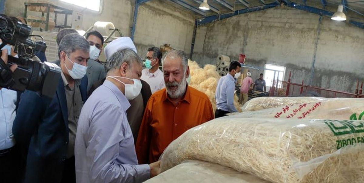 بازدید وزیر صمت از پروژههای صنعتی قلعهگنج