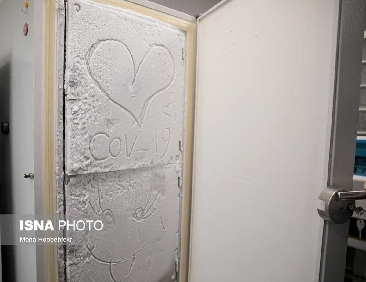 تصویر جالبی از روی درب فریزر واکسن کرونا