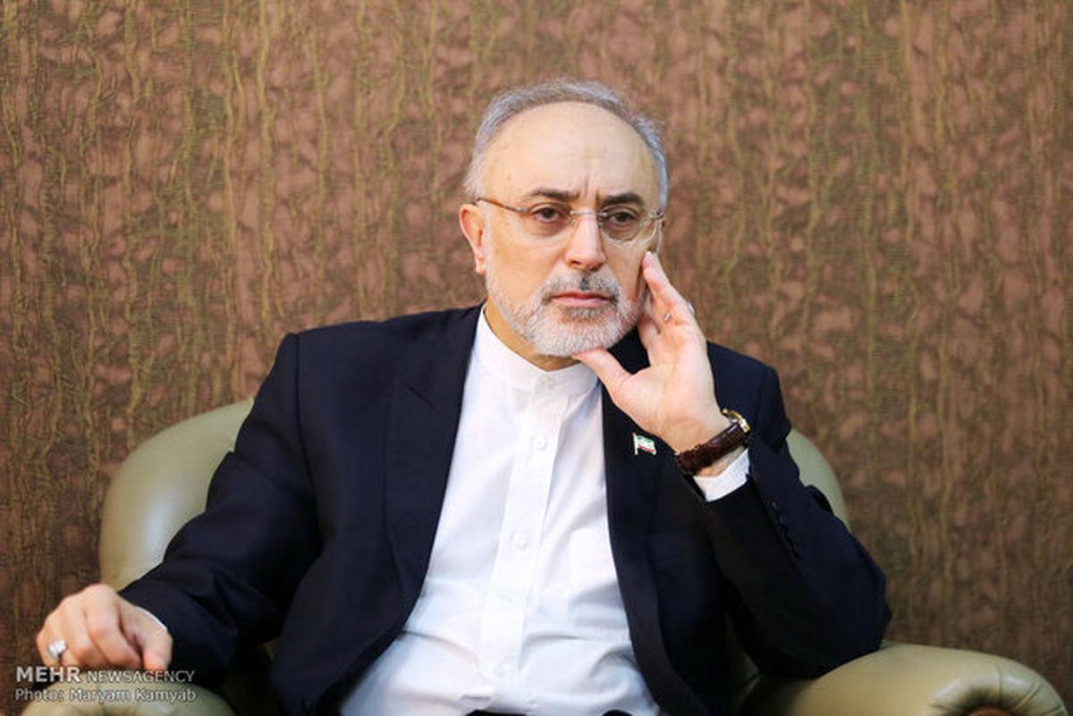 انتقاد تند صالحی از مخالفان داخلی برجام
