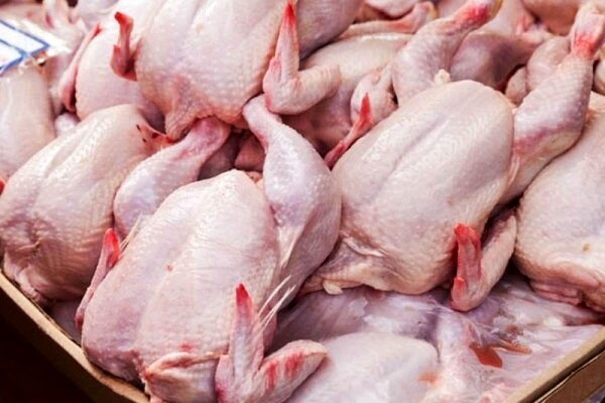 دلایل گرانی مرغ چیست؟