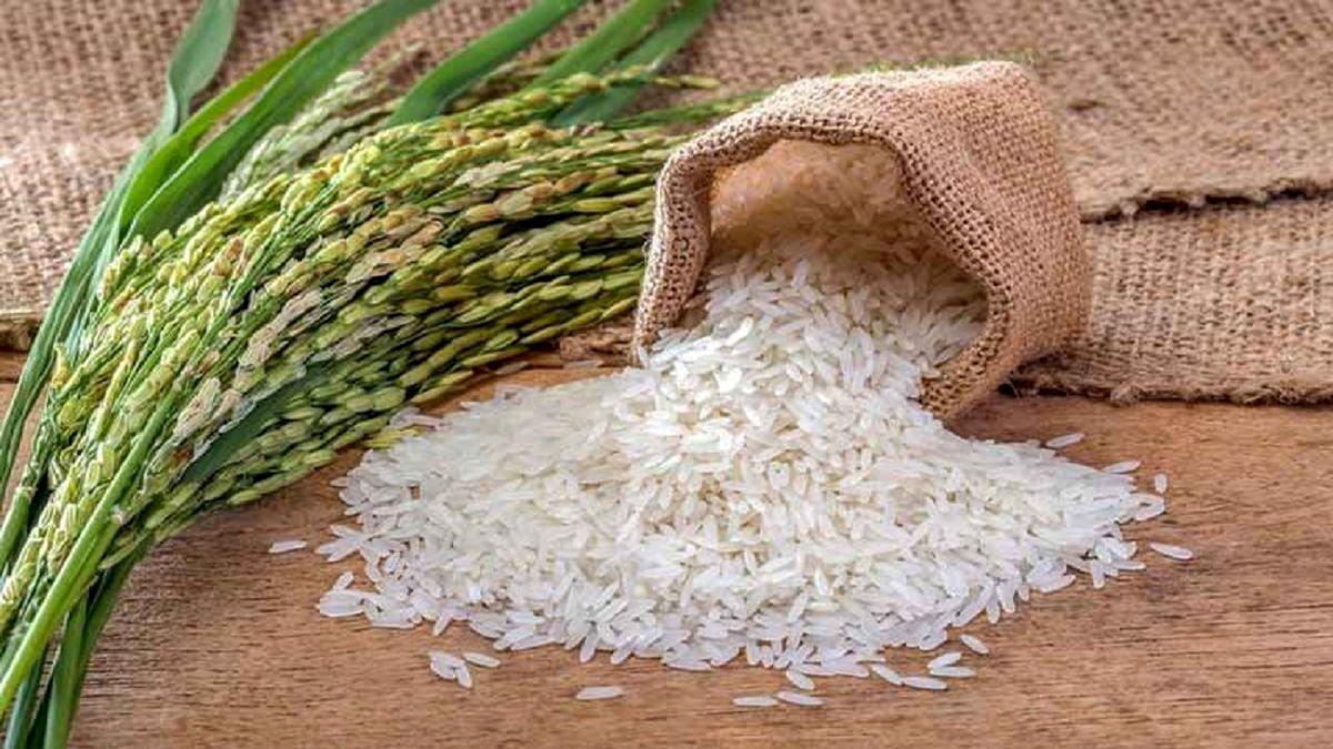 اختلاف ناچیز قیمت برنج داخلی و خارجی