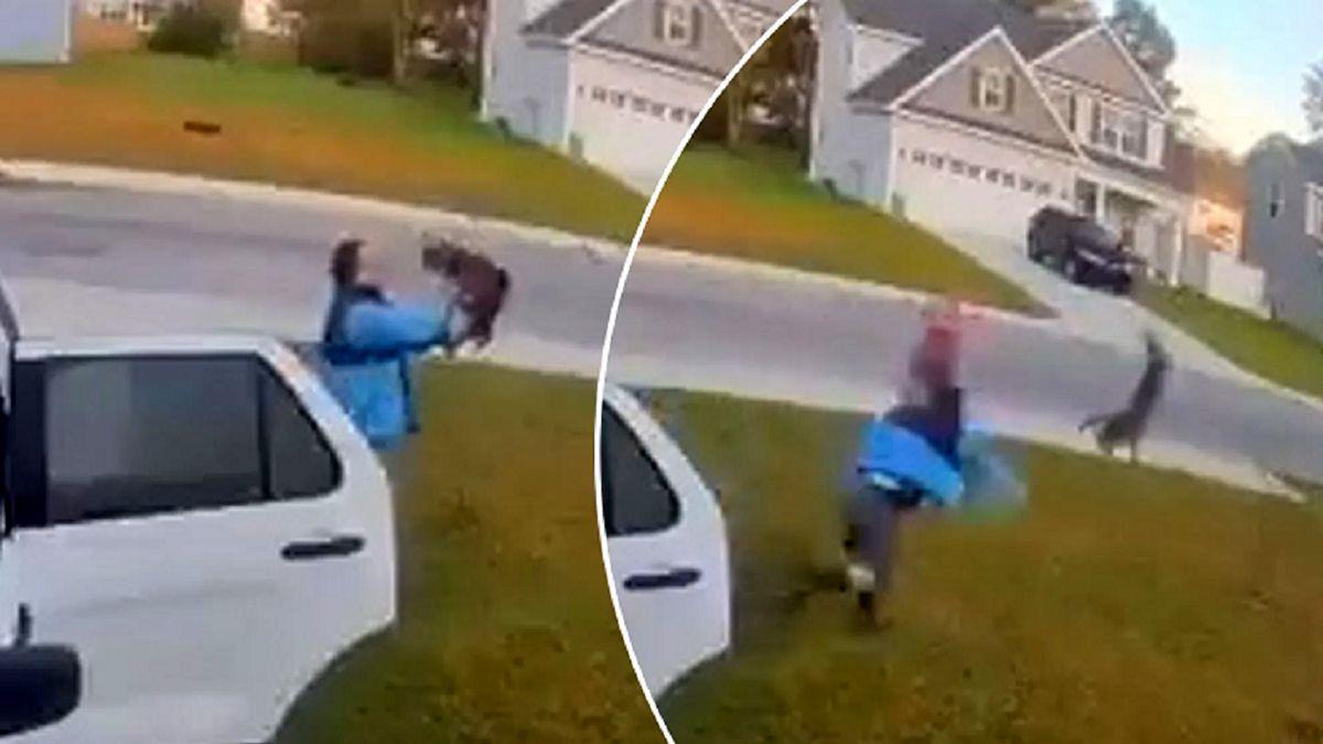 حمله وحشتناک سیاه گوش به یک زن در خیابان! +عکس