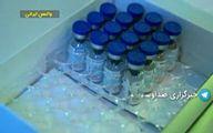 اولین تزریق واکسن کرونا در ایران تا سه روز آینده