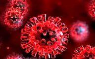 کرونا ویروس/ علایم جدید کرونای انگلیسی چیست؟+ جزئیات مهم