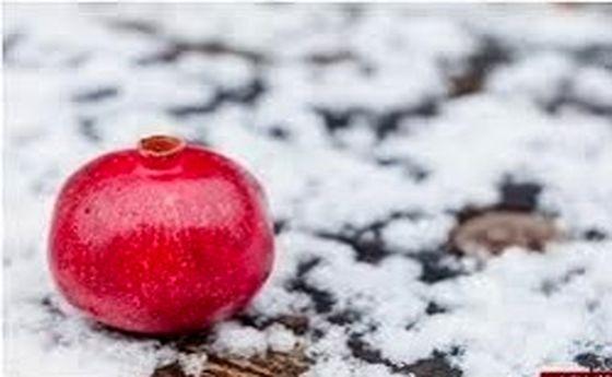 ۱۰ معجزه فصل سرما برای سلامتی
