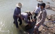 تصاویر: کشف بمب جنگی در پلدختر