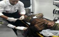 پلنگ مرد کندوانی را تیکه پاره کرد! +تصاویر