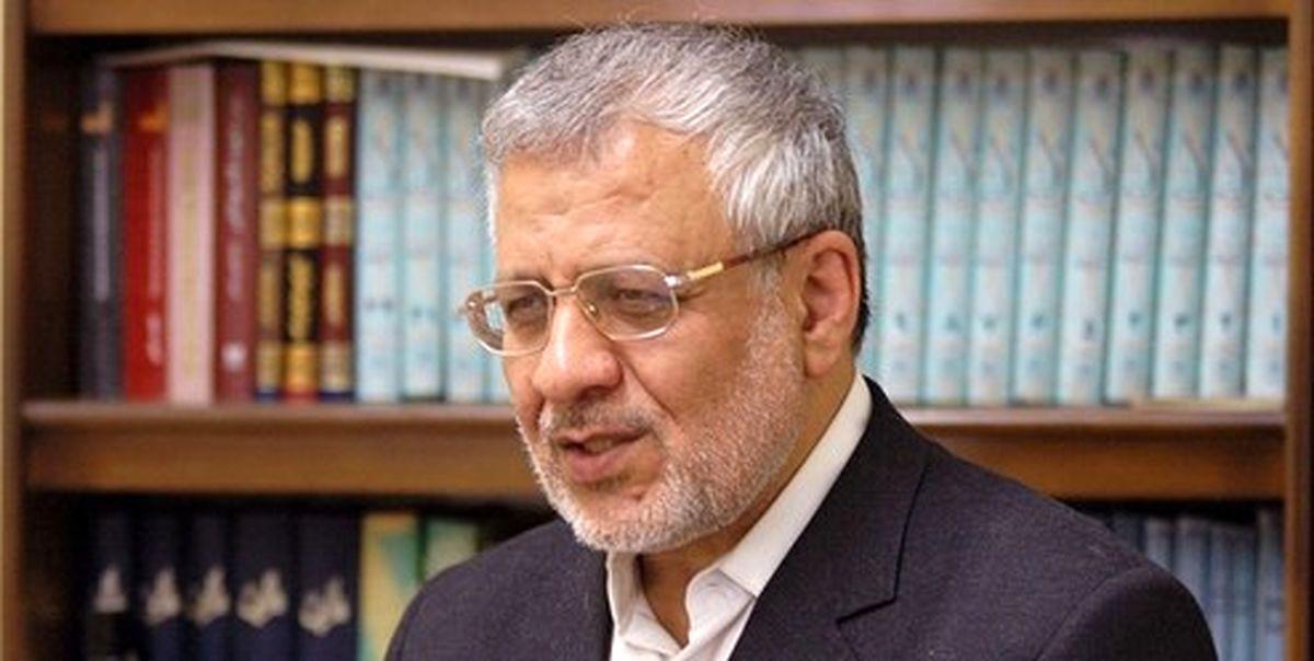 بادامچیان: دولت پاسخگوی تصمیمات آسیبآور خود نیست
