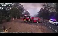 فیلم: فرار آتشنشانان استرالیایی از گسترش آتش