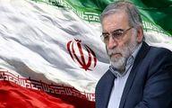 واکنش های جهانی به ترور دانشمند ایرانی