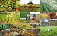 محصولات کشاورزی در بهار ۹۹ چقدر گران شد؟