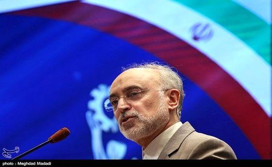 صالحی: انقلاب اسلامی تحولات عمیق جهانی در پی داشت