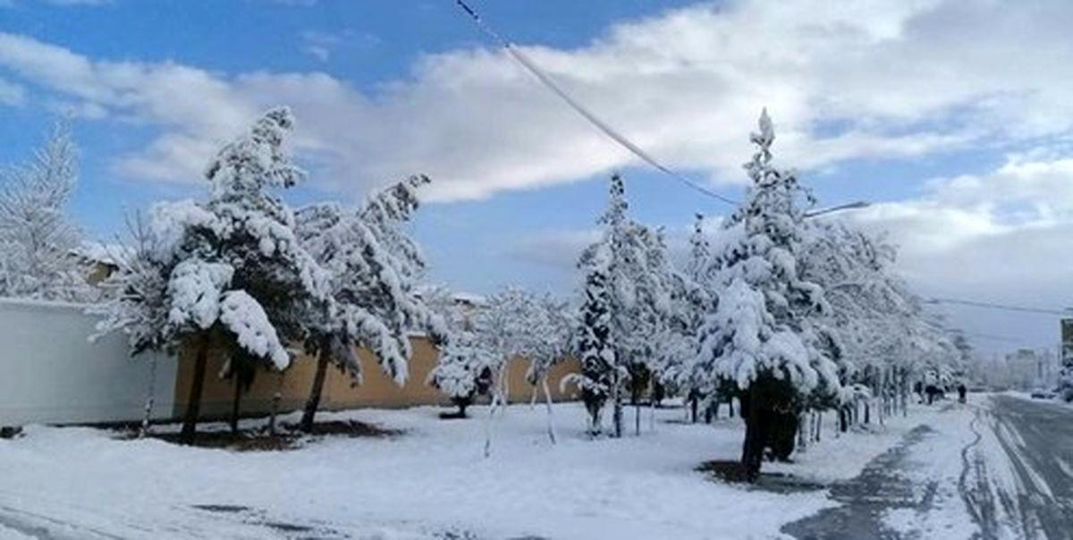 یخبندان در راه ۲۵ استان