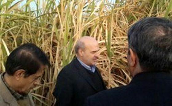 آتش هورالعظیم رئیس محیط زیست را روانه خوزستان کرد