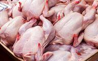 هشدار جدی با عرضهکنندگان این نوع مرغ