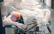 تولد ۵۲۴۲ نوزاد در ۹۸.۸.۸