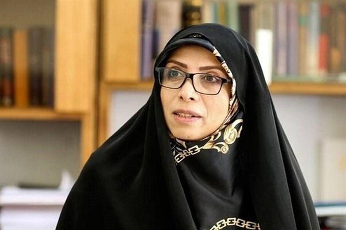 امینزاده: وزارتخارجه مانع تمدید تحریم تسلیحاتی شود
