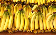قیمت موز در میادین میوه و ترهبار چند؟