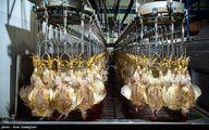 مرغ مهره ماه ارزان میشود