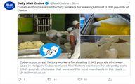 پنیر دزدی کارگران خبرساز شد! +عکس
