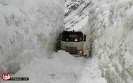 عکس: میزان برف در جاده کرج به چالوس