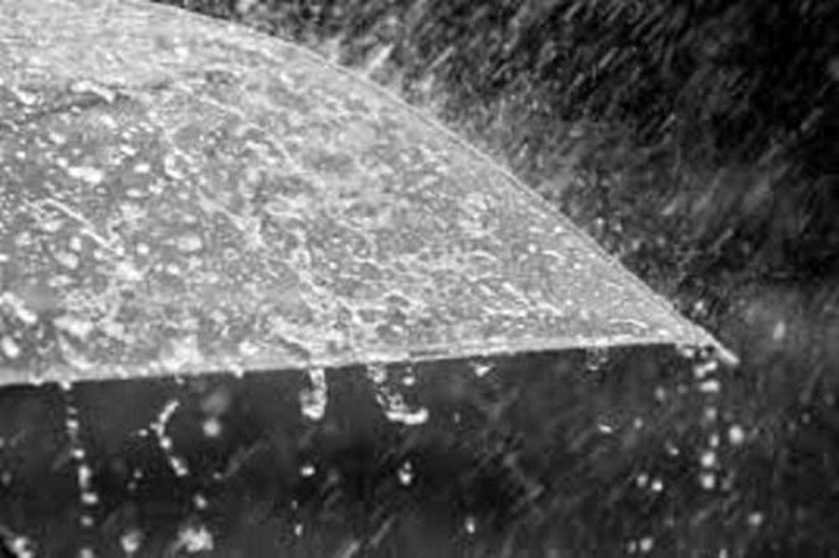 بارندگیها نسبت به پارسال ۸ درصد کاهش یافت