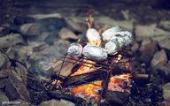 آشپزی بدونوسیله در دل طبیعت/ تخم مرغ را در پوست پرتقال بپزید، گوشت را در برگ
