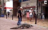 خیابان گردی مرد ژاپنی با حیوان خانگی عجیبش! +عکس