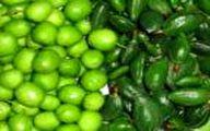 ماجرای گوجه سبز ۲۲۰ هزار تومانی در تهران