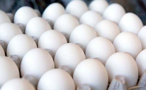 قیمت شانه تخممرغ معادل یارانه نقدی یک ماه!