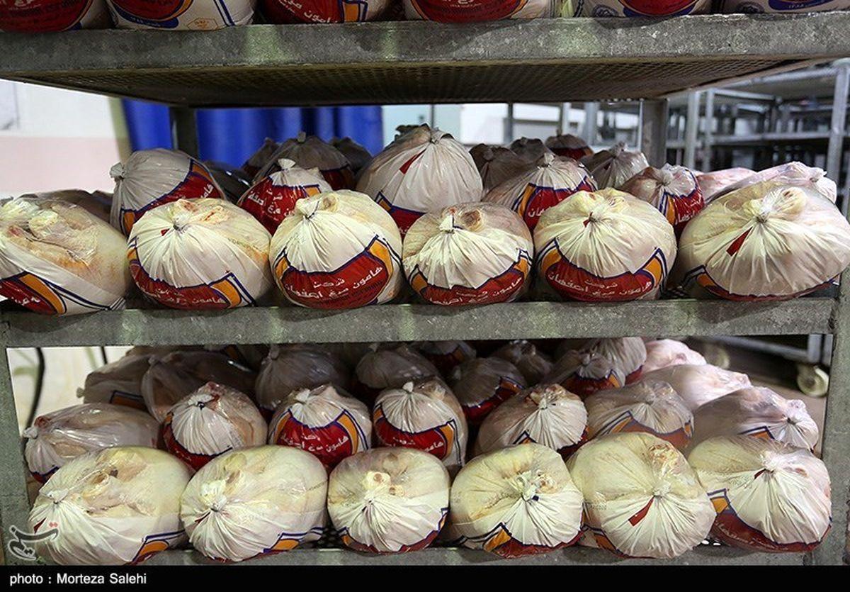 انجماد مرغ و فروش مرغ سبز ممنوع! + سند