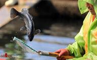 تصاویر: آمادگی صیادان در فصل شکار
