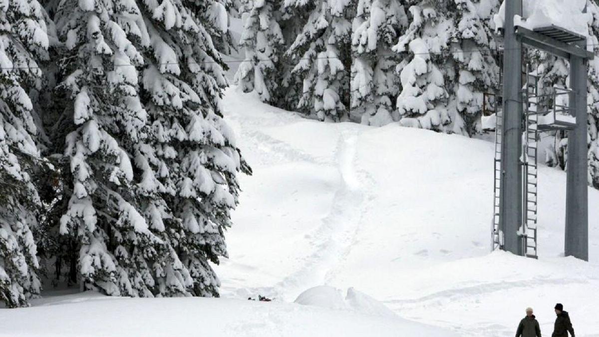 حمله خرس به اسکی باز در پیست اسکی آلاسکا +فیلم