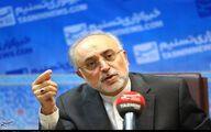 علی اکبر صالحی: ملزم به اجرای قانون مجلس هستیم