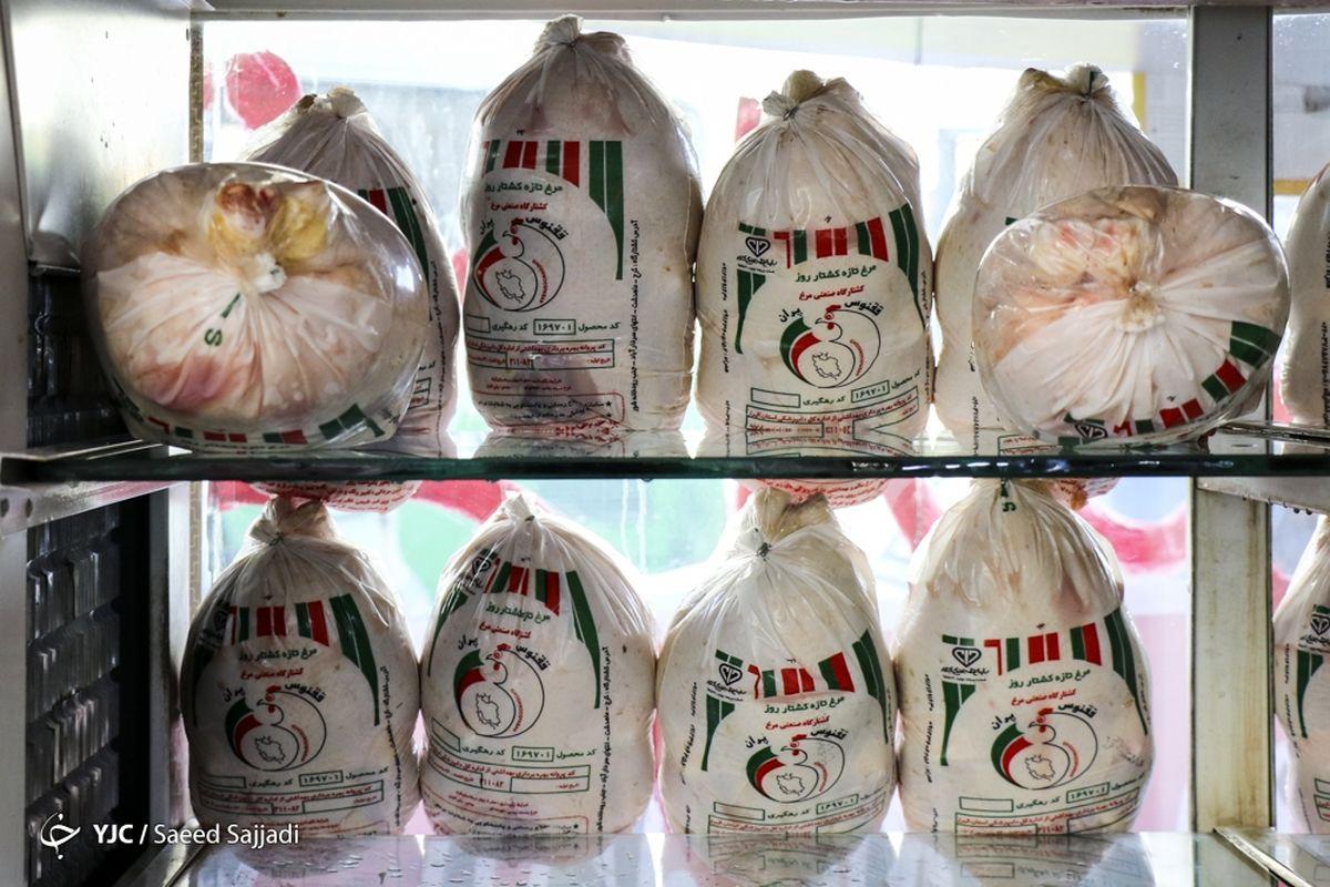 عرضه مرغ گرم از امروز در استان تهران