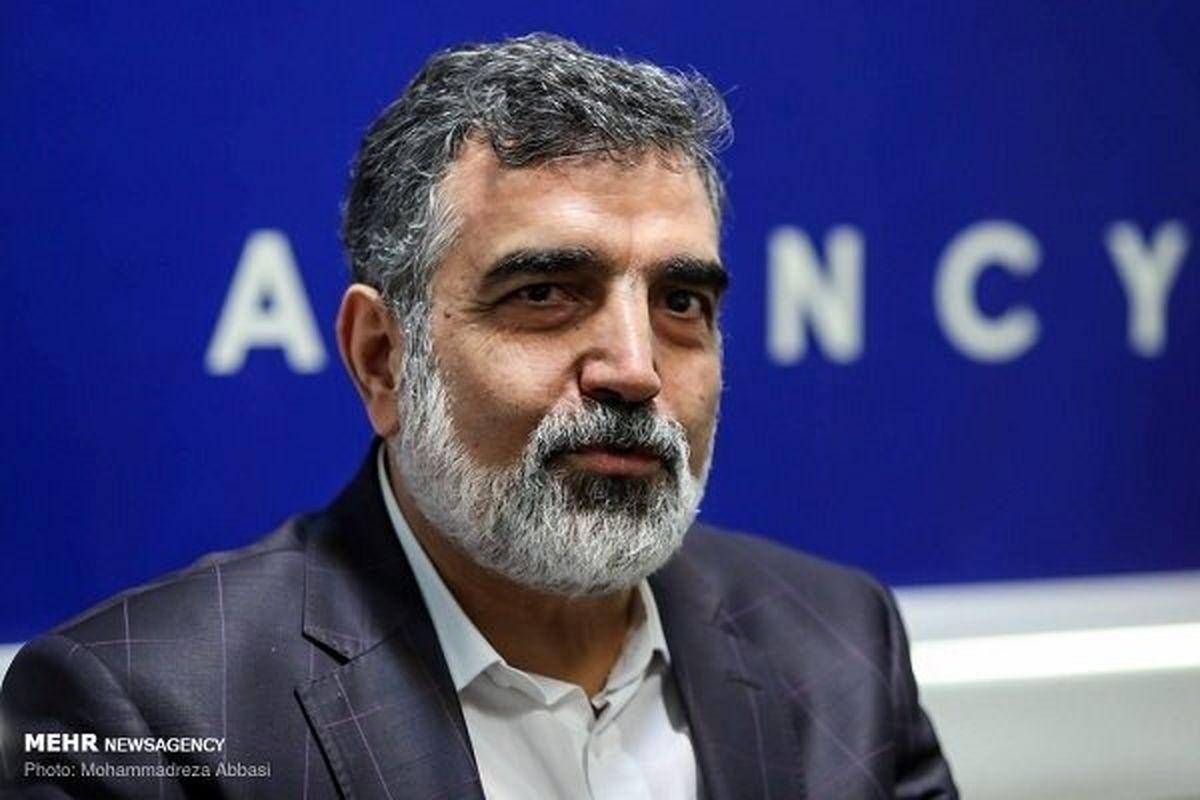 کمالوندی: ایران از نظر منابع اورانیوم فقیر نیست